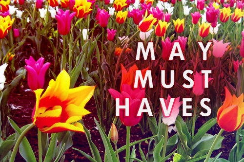 May Must-Haves - banner