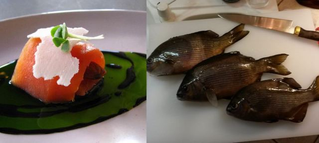 FishinKitchen
